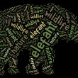 Elefant wordcloud — Stock Photo