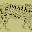 Panther wordcloud — Stock Photo