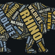 Stock Photo: Rhino wordcloud