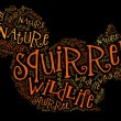 Squirrel wordcloud — Stock Photo