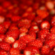 Strawberries background — Stockfoto #26388923