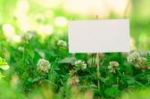 Letrero vacío en la hierba verde — Foto de Stock