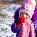 Portrait of happy little girl in snowy landscape — Stock Photo #37008571