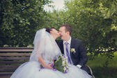Walk of newly-weds — Stock Photo