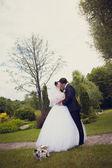 Walk of newly-weds — Stock fotografie