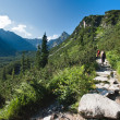Tatra mountains in summer — Foto de Stock