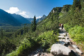 Tatra mountains in summer — Stock Photo