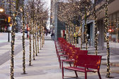 Lighted trees in downtown vancouver christmastime — Stock Photo