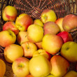 Stock Photo: Basket of apples at market