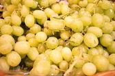Yeşil çekirdeksiz üzüm piyasası — Stok fotoğraf