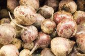 Fresh turnips at the market — Stock Photo