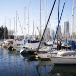 Sailboats at false creek pier -wide shot — Stock Photo #20104573