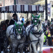 Horses and carriage at st.patrick's day parade - Stock Photo