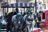 Horses and carriage at st.patrick's day parade — Stock Photo