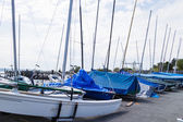 Jachty żaglowe w ambleside park — Zdjęcie stockowe