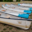 Stock Photo: Old canoes on grass