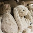 Stock Photo: Cute stuffed animals on display 2