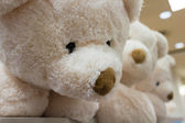Cute stuffed animals on display 3 — 图库照片