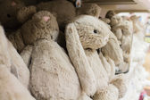 Cute stuffed animals on display 2 — Stock Photo