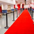 Stock Photo: Red carpet to santa