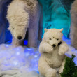 Cute polar bear cub in arctic scene — Stock Photo