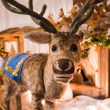 Stock Photo: Cute reindeer in display
