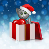 Gray cat in the gift box — Stock fotografie