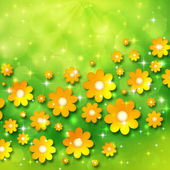 Spring background with chamomiles — Stock Photo
