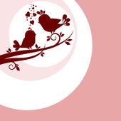 Dos pájaros en el amor — Foto de Stock