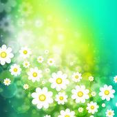Våren bakgrund med chamomiles — Stockfoto