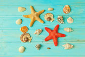 Sea treasures — Stock Photo