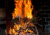 Hot orange fire — Stock Photo