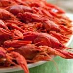 Boiled crawfish — Stock Photo #18688093