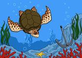Sea turtle — Stock Vector