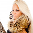Beautiful blonde girl posing with fur on his neck, portrait — Foto de stock #15789149