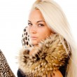 Beautiful blonde girl posing with fur on his neck, portrait — Stok Fotoğraf #15789149