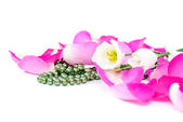 Bloem bloemblaadjes ketting — Stockfoto