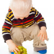 Little child picks grapes — Stock Photo