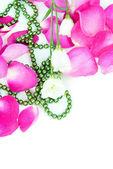 Schuine achtergrond roze bloemblaadjes — Stockfoto