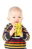 Beautiful child boy eating grapes — Stockfoto