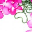 Rose petals and heart bead — Stockfoto