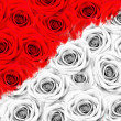 Stock Photo: Many roses, half of the color, half of the black and white