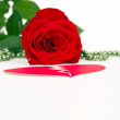 Red rose flower with hearts and beads — Stock Photo