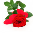 Red rose flower with hearts — Stock Photo