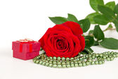 Flower rose with wedding rings — Stock Photo