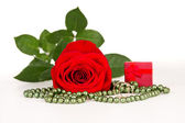 Red rose with gift and wedding rings — Stock Photo