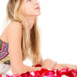 Healthy skin, a beautiful girl lies in rose petals — Stock Photo