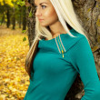 Beautiful blonde in the autumn weather lean on a tree — Stock Photo