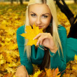 Beautiful blonde lies in the autumn weather — 图库照片