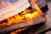 Background of burning logs outdoors — Foto de Stock